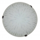 ARGUS 41120/30/2 OPTIMA přisazené svítidlo sklo - 30 cm
